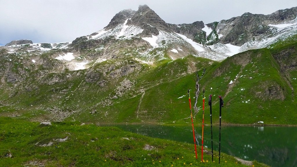 bastones Leki Micro Trail Pro